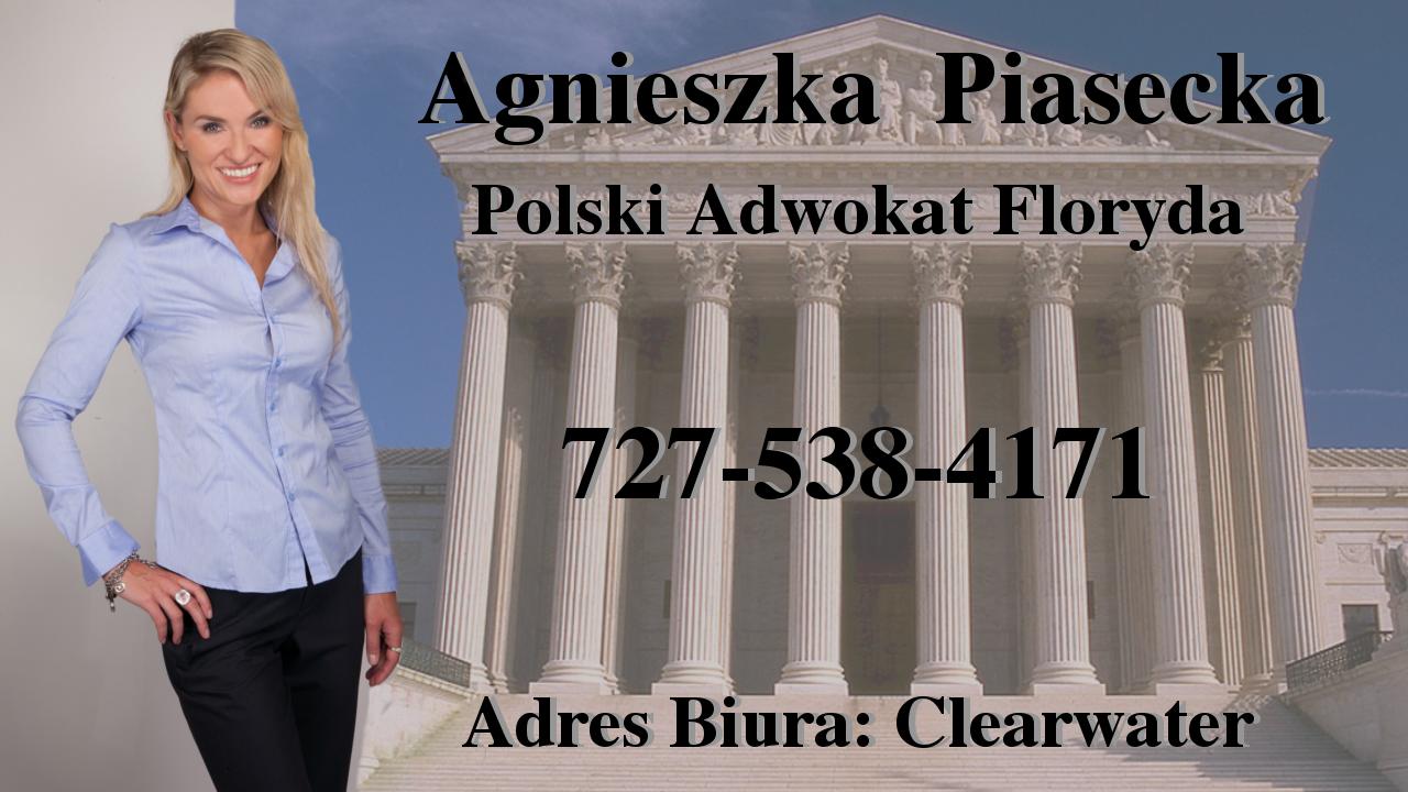 Polscy Prawnicy - Tampa, Floryda